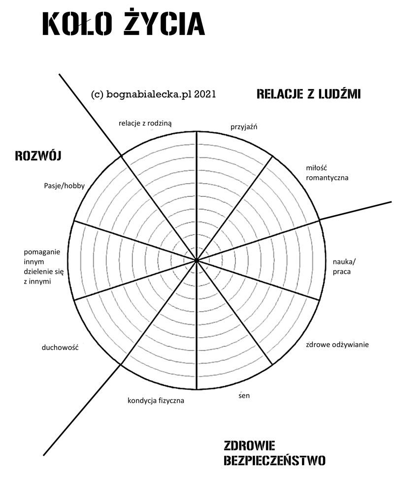 Koło życia wykres